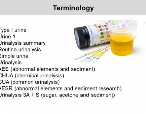 Automated Urine Testing: Benefits and New Paradigms